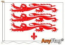 - DORSET OLD LIONS ANYFLAG RANGE - VARIOUS SIZES